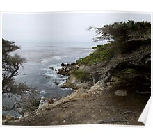 17 Mile Drive, Pebble Beach Poster