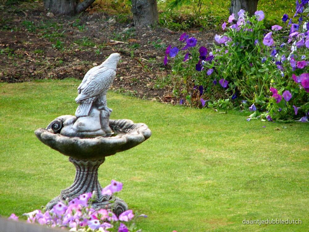 birdbath by daantjedubbledutch