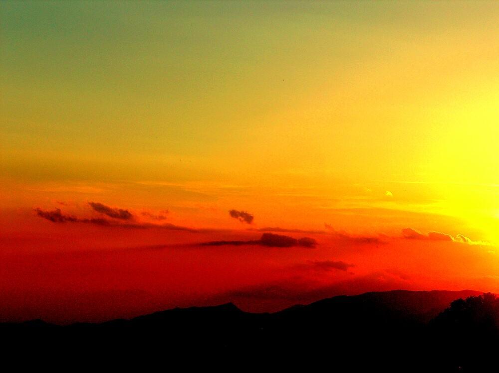 Sunset by honey
