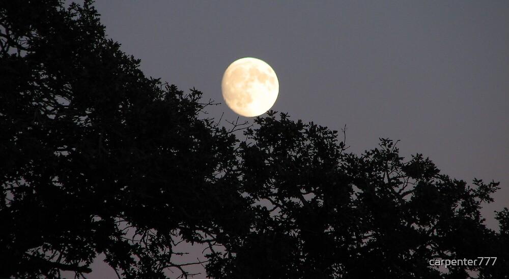 Full moon by carpenter777