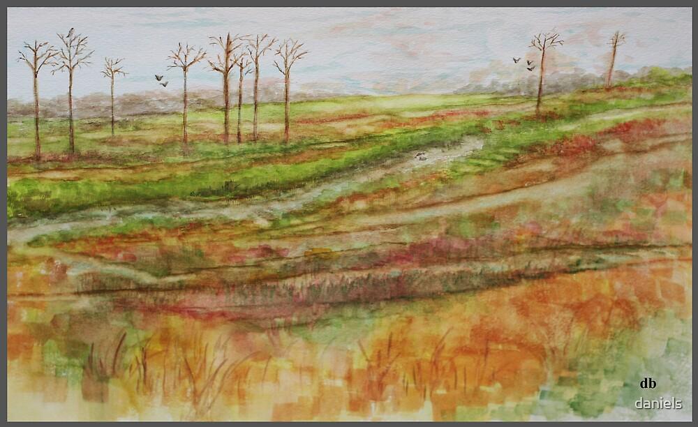 marshland by daniels