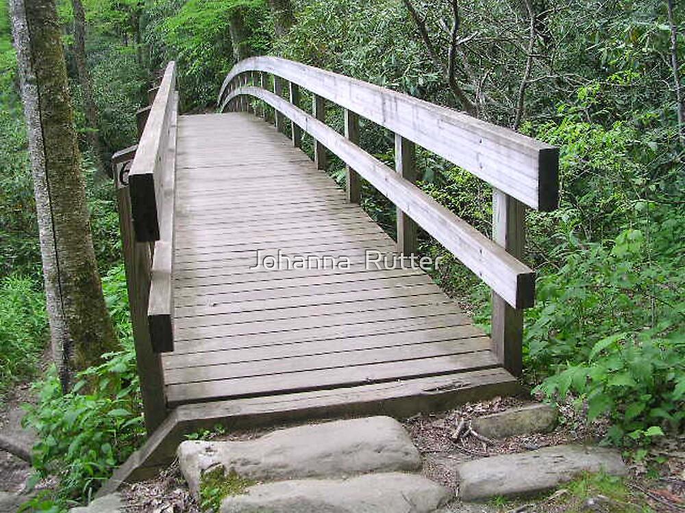 Bridge in Boone North Carolina by Johanna  Rutter