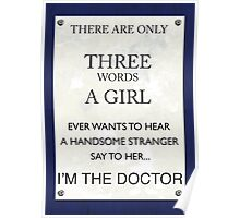 3 Words...I'm The Doctor Poster