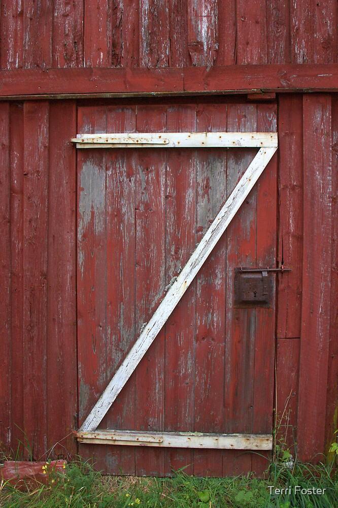 Through Z Door by Terri Foster
