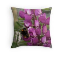 Bumble Bee, Still Looking... Throw Pillow