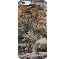Beyond The Bridge iPhone Case/Skin