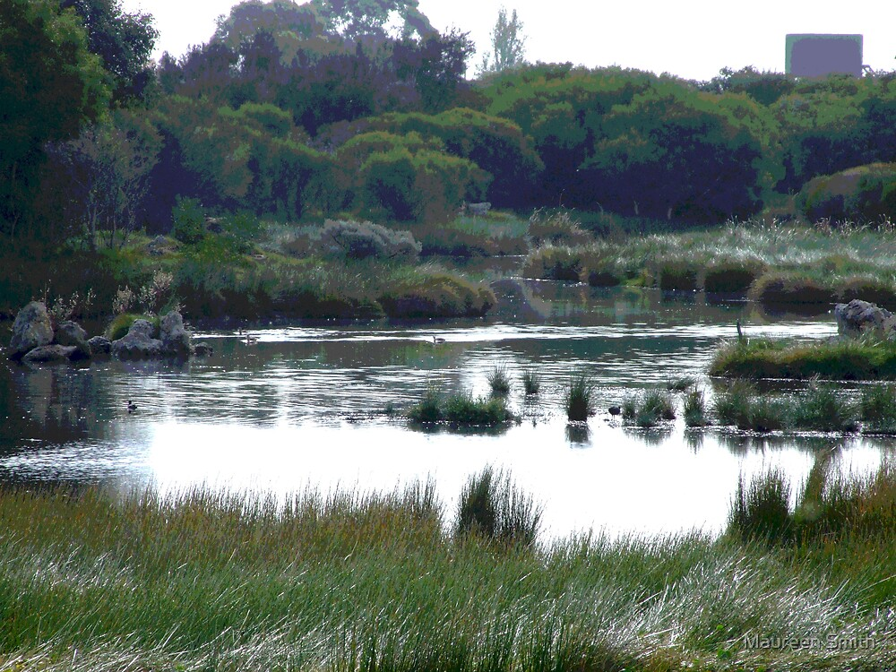 Swamp Scene, Bunbury, Western Australia by Maureen Smith