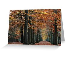 While the leaves kept falling Greeting Card