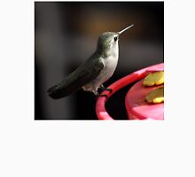 ADULT ANNA'S HUMMINGBIRD ON FEEDER PERCH Unisex T-Shirt