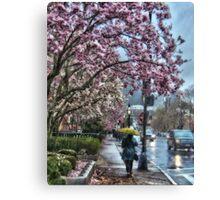 First Spring Rain Canvas Print
