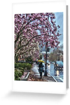 First Spring Rain by LudaNayvelt