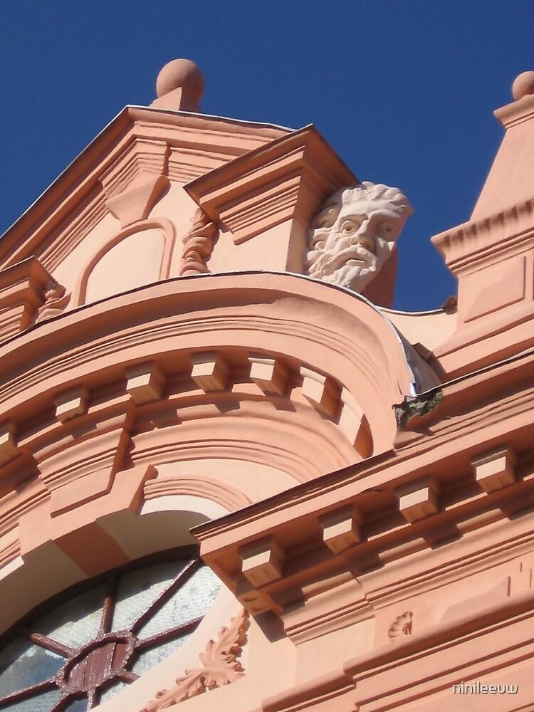 Sibiu Romania by ninileeuw