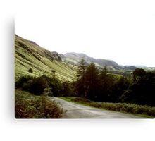 From The Mountain Passes Canvas Print