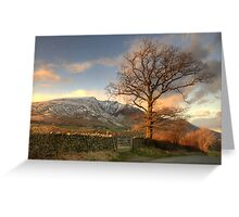 Blencathra and Tree Greeting Card