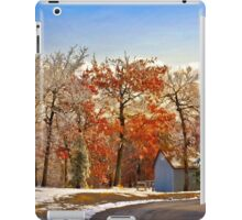 Change of Seasons iPad Case/Skin