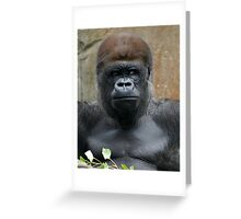 That's Mr. Magilla to you Greeting Card