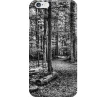 Forest 4 iPhone Case/Skin