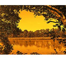 River Landscape Photographic Print