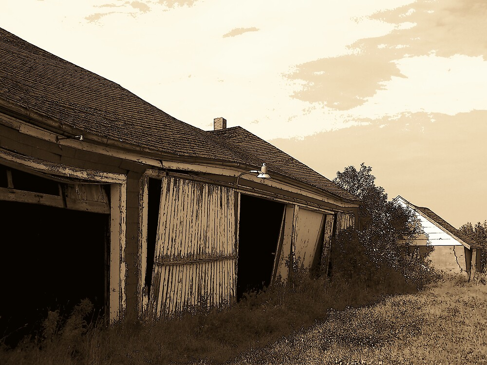 Old Shed by Gene Cyr