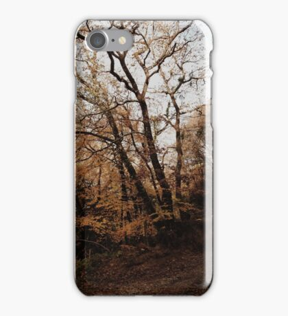 Autumn walks. iPhone Case/Skin