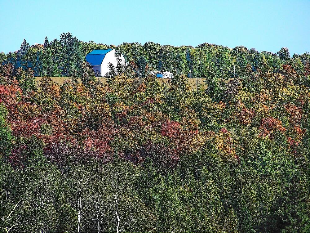 Hilltop Barn by Gene Cyr