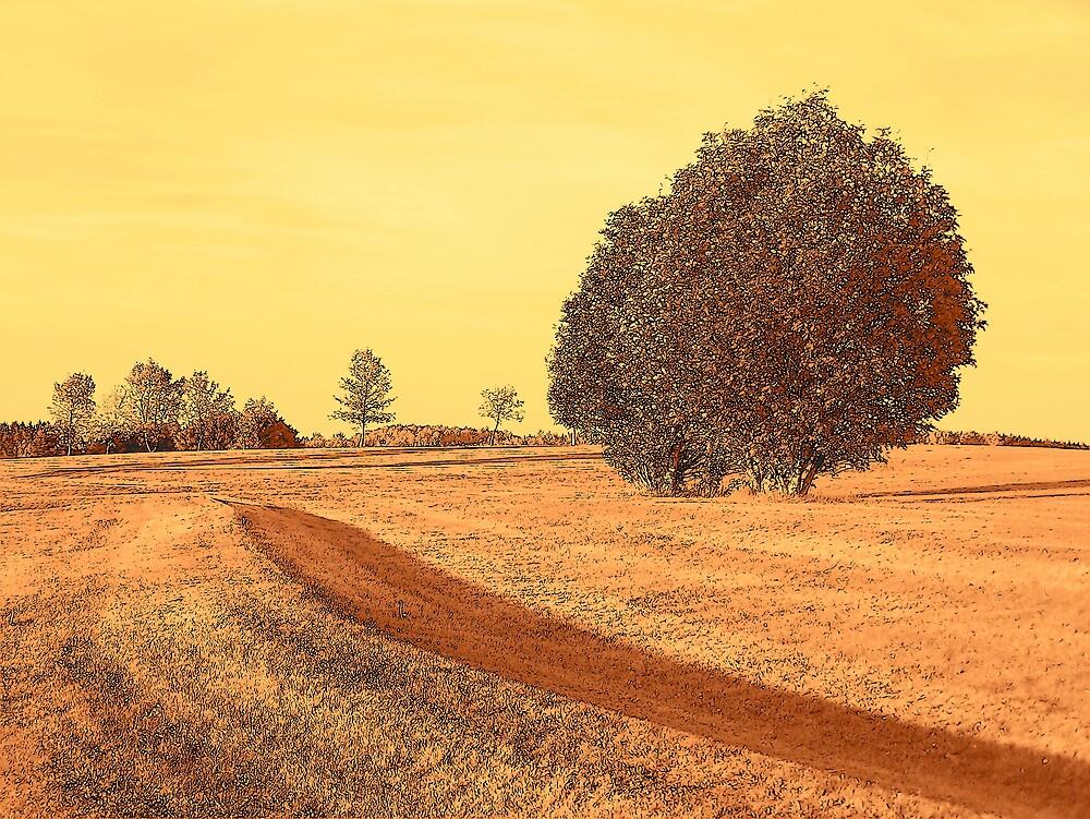 Trees by Gene Cyr