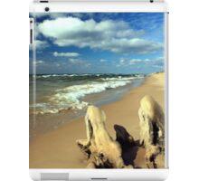 November on Lake Michigan iPad Case/Skin