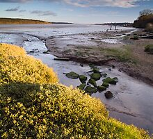 Orwell Estuary by Marc Bedingfield