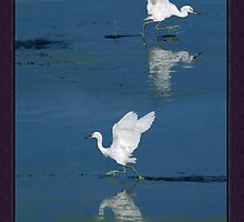 Walking On Water by Burt