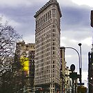 Flat Iron Building by Peter Horsman