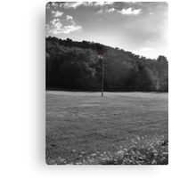RED WHITE AND BLUE! Canvas Print