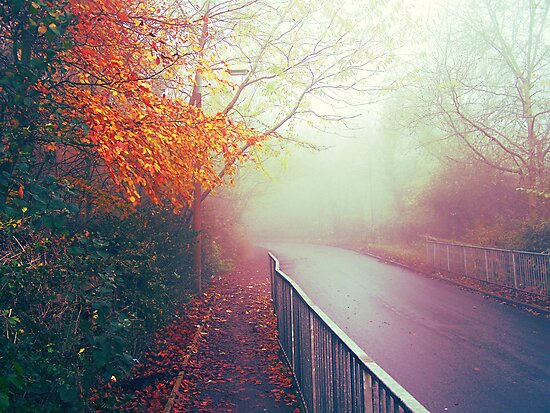Misty Days by Faizan Qureshi