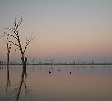 Mulwala Sunrise 1 by Alex Evans