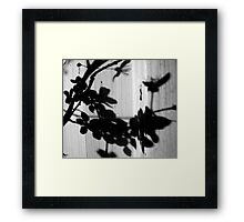 Shadows on the Shed Framed Print