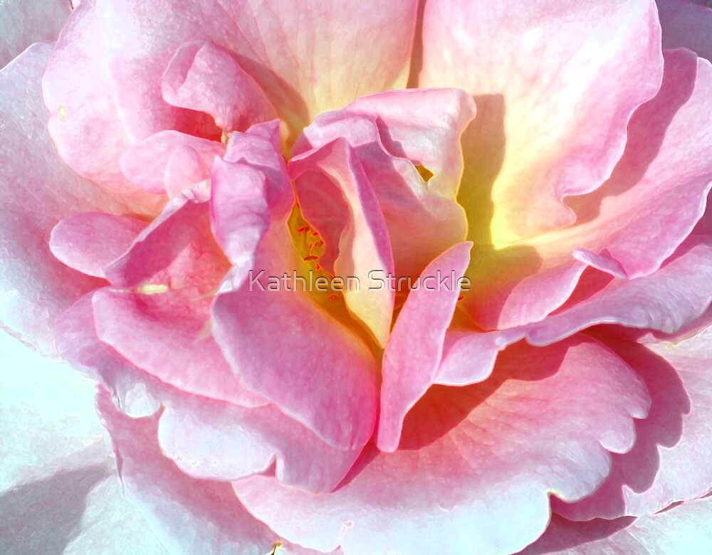 Rose Curls by Kathleen Struckle
