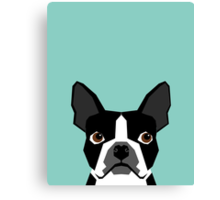 Logan - Boston Terrier pet design with bold and modern colors for pet lovers Canvas Print