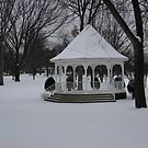 WINTER SNOW AND A BEAUTIFUL GAZEBO   by MsLiz