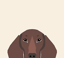 Piper - Dachshund, weener dog, wiener dog, pet portrait, sausage dog, pet by PetFriendly