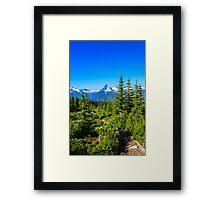Rocky mountain  Meadows Framed Print