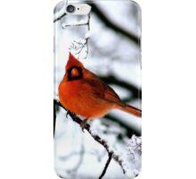 Cardinal in Tree iPhone Case/Skin