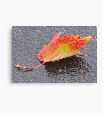 Ode to Autumn Canvas Print
