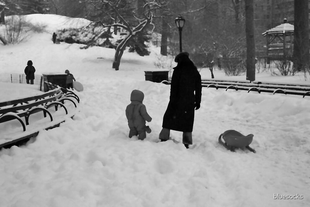 White Christmas Central Park by bluesocks