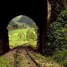 Colombian Tunnel  by Larry Costales