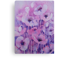 Shirley Poppies Canvas Print