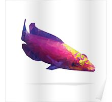 Geometric Abstract Mystery Wrasse Poster