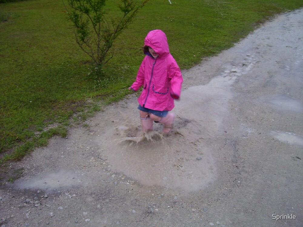 Mud Puddles by Sprinkle