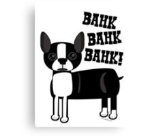 Boston Accent Terrier Canvas Print