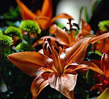Flower by f6rider