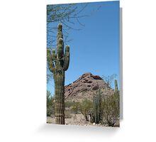 Arizona Desert Greeting Card