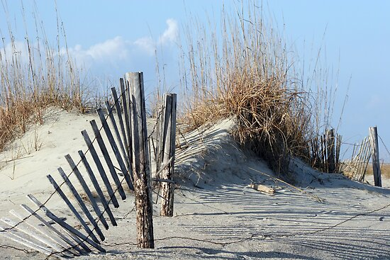 Fence in Dunes by dbvirago